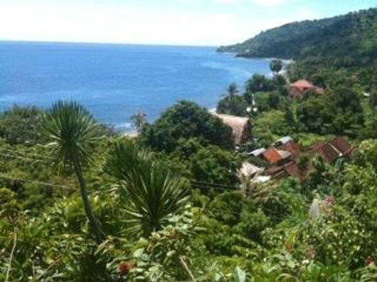 Baliku Dive Resort : Room with a view