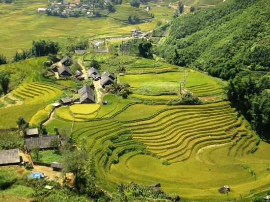 Sapa, Vietnam: Lao Chai, Sa Pa