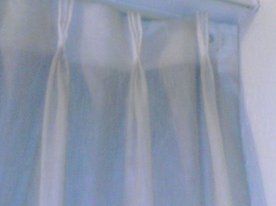Quality Inn University Center: dirty curtain liner