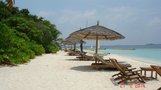 Reethi Beach Resort: Relax in the sun