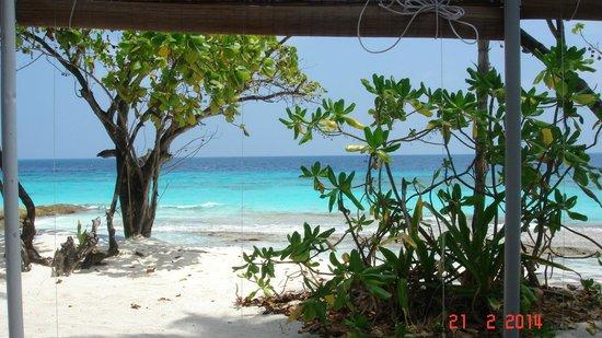 Reethi Beach Resort: Soak in the view