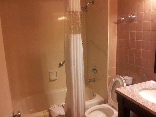 Best Western Hibiscus Motel: Clean Bathroom