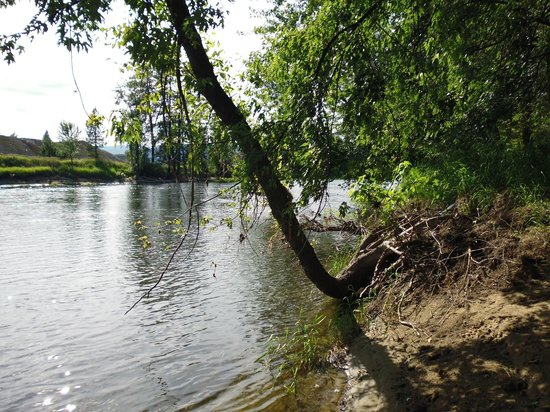 The Victorian Motel and RV Park: River behind the Motel and RV park