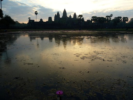 Angkor Great Tours Taxi Service
