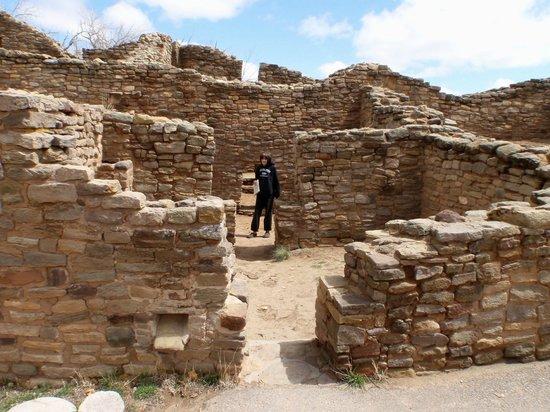 BEST WESTERN Territorial Inn & Suites: Aztec Ruins