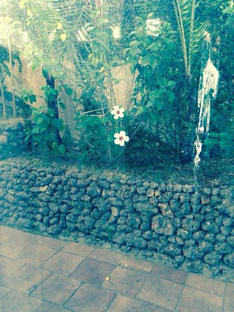 Hotel Soffia Boracay: Lovely hallway outside room