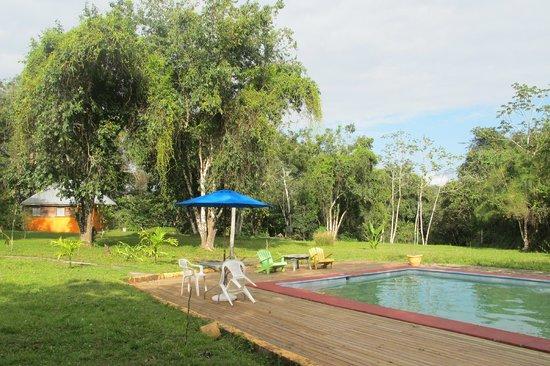 Howler Monkey Lodge : pool