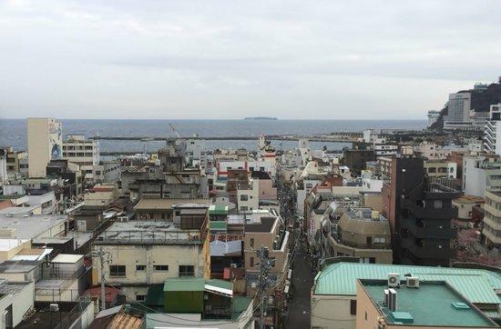Atami New Fujiya Hotel: 部屋から初島が見える