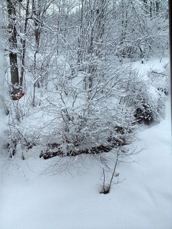 Chalet Vallon : View from the room- Snow!!