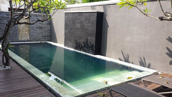 The Wolas Villas & Spa: Own personal pool