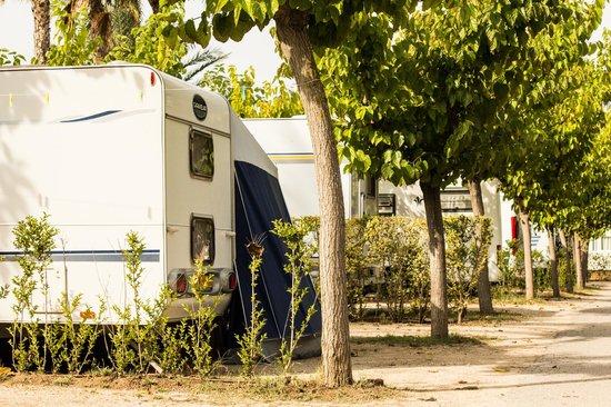 Vendrell Platja: Parcelas camping