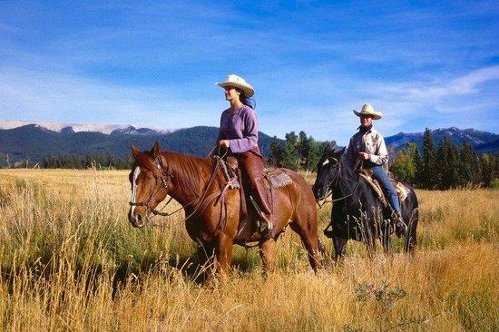 Echo Valley Ranch & Spa: Horses Two Lady Horseback Riders At Ranch