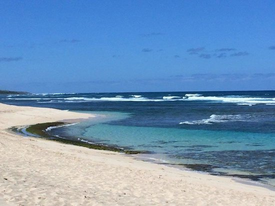 Honolulu Soaring: The beaches down the road from Dillingham Airfield