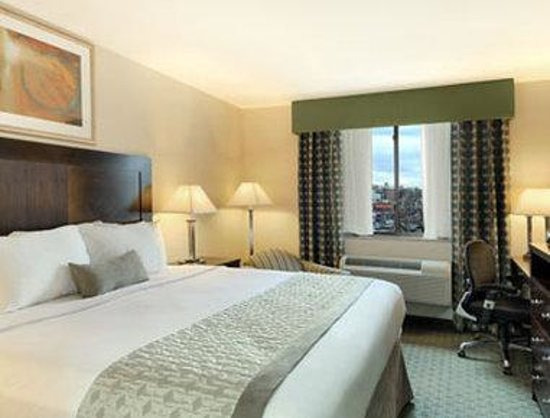 Ramada Jamaica/Queens: Standard King Bed Room