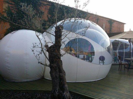 Mil Estrelles: Burbuja Polaris