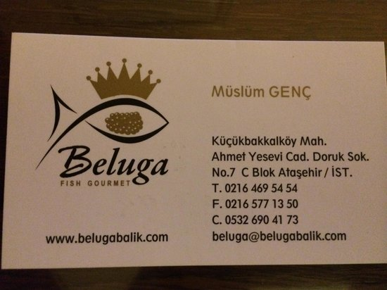 Business card picture of beluga fish gourmet istanbul tripadvisor beluga fish gourmet business card colourmoves