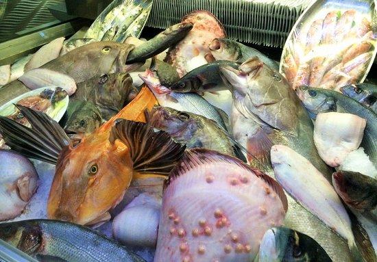 Beluga Fish | Mezze Picture Of Beluga Fish Gourmet Istanbul Tripadvisor