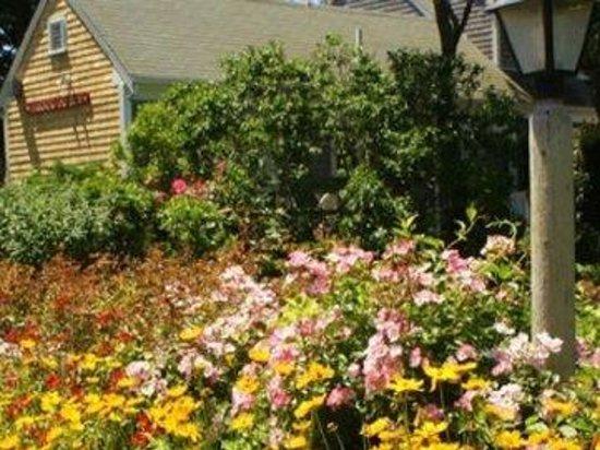 Allen Harbor Breeze Inn & Gardens: Property Gardens