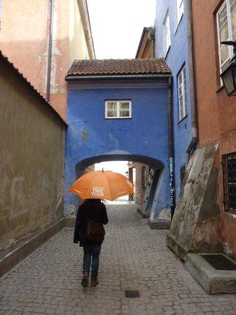Orange Umbrella Free Tour: orange umbrella tours