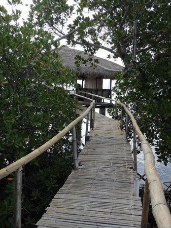 Dos Palmas Island Resort & Spa: cabana