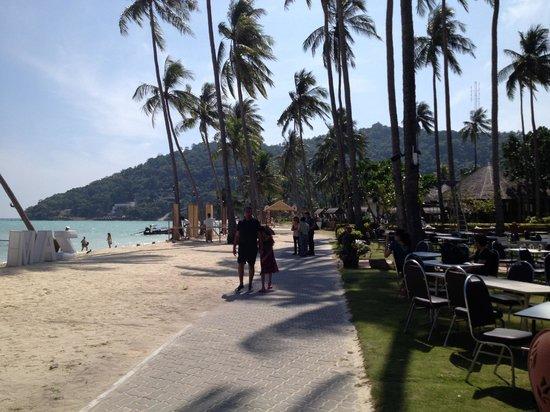 Phi Phi Island Village Beach Resort: Beautiful Beach Front