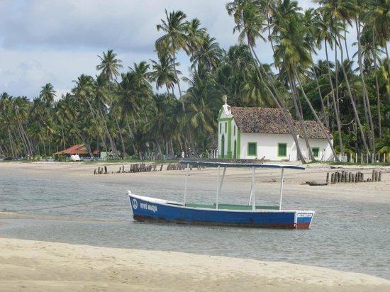 Carneiros Beach: Praia dos Carneiros