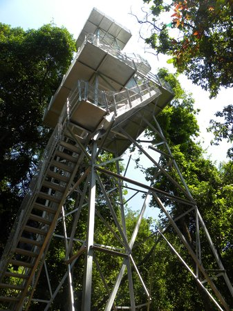Aralam wildlife sanctuary: Watch Tower