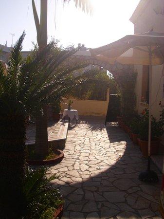 Hotel Lola : Yard