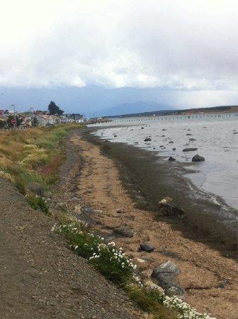 Channel of Last Hope (Ultima Esperanza) : Por la ribera