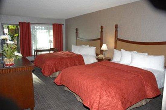 Hotel Universel Quebec: Guest Room