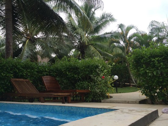 Mangoes Resort: Pool and Grounds