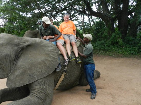 Elephant Whispers: Dismounting after the ride