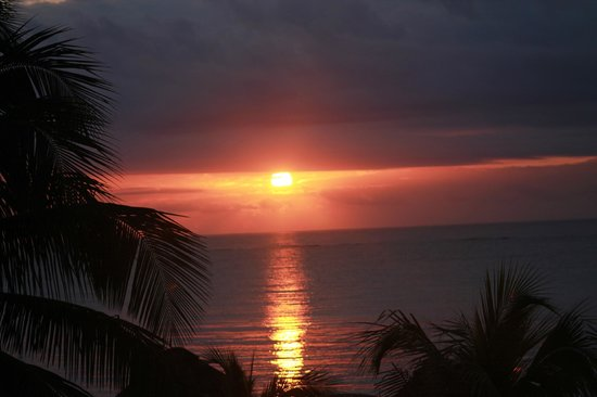 PavoReal Beach Resort Tulum: alba mexicana