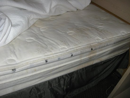 Travelodge Savannah Area/Richmond Hill: Bed