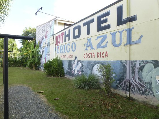 Hotel Perico Azul : We love this place!