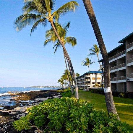 Kona Reef Resort : JPG