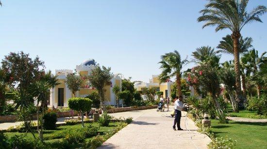 Lilly Land Beach Club Hotel : Красивый вид