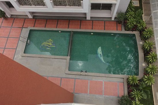 Nagarjuna Suites : Pool view