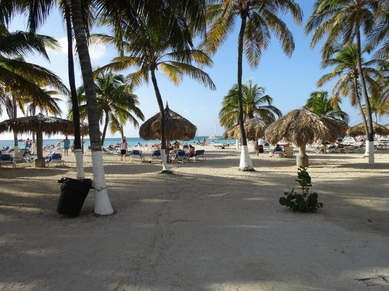 Hotel Riu Palace Aruba : 13
