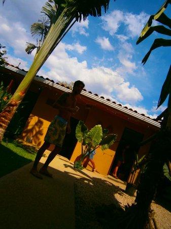 Hotel Surf Camp Mediterraneo: ........
