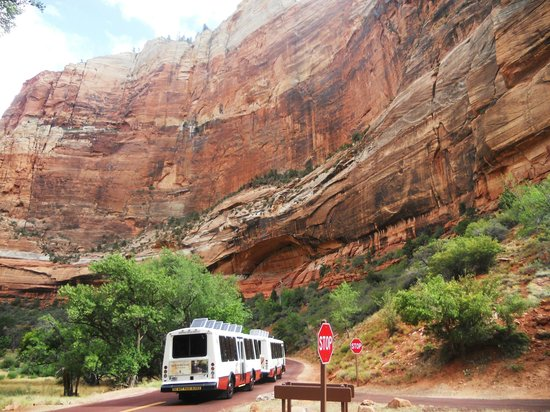 Zion Shuttle: inside the park at zion