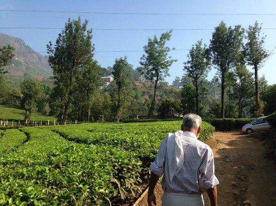 Nakshathra Inn: Babu bringing us on a trekking tour first thing in the morning. Beautiful views!