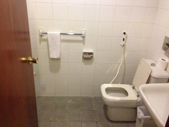 Elaf Taiba Hotel: Bathroom