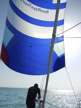 Sun Rays Tours: Sailing Takes Me Away ...