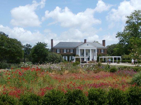 Boone Hall Plantation : spring, may!