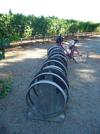 Napa Valley Bike Tours : Cool bike rack at a local vineyard