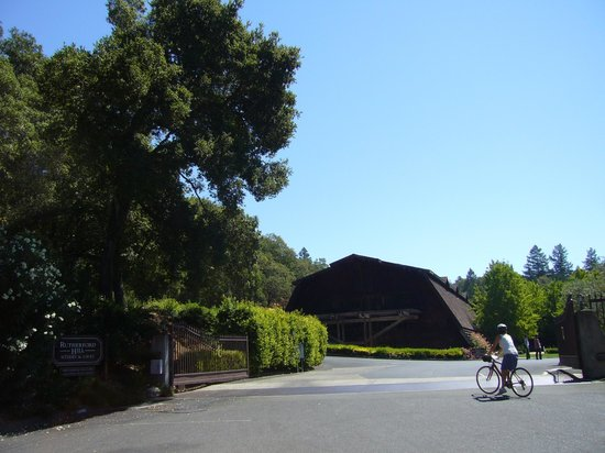 Napa Valley Bike Tours : Rutherford Hill