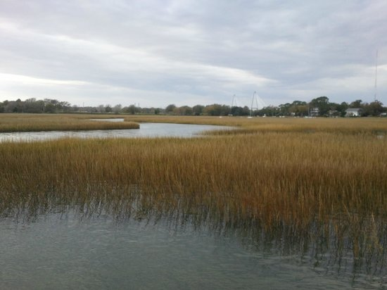 Shem Creek Park : gorgeous views opposite shrimp boats on Shem