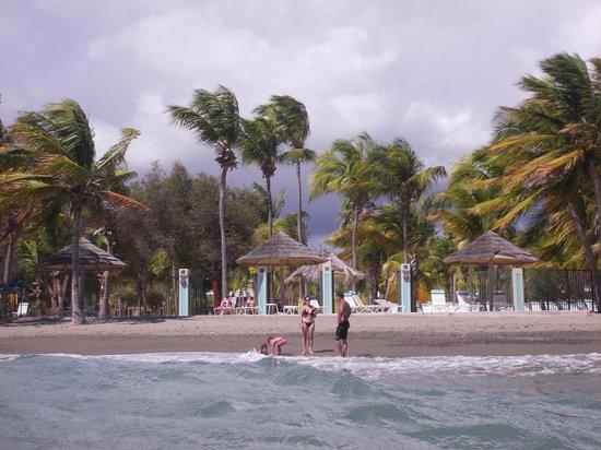 Hilton Ponce Golf & Casino Resort : Hotel beach from water