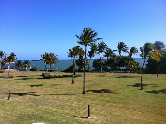 Hilton Ponce Golf & Casino Resort : View from executive tower